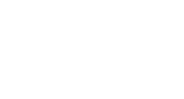Auburn Village