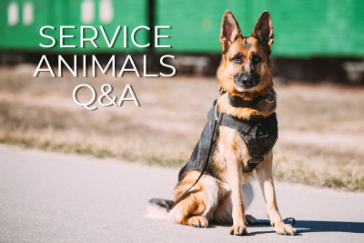 Service Animals Q&A