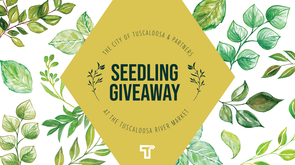 City of Tuscaloosa to Host Tree Seedling Giveaway at Tuscaloosa River Market