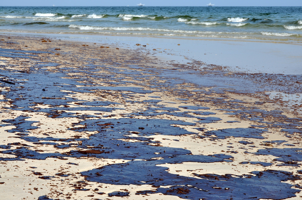 Then and Now: Coast is Different 10 Years After Spill